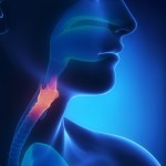 Nasopharynx in CF Patients May Be Where Bacterial Infections Hide