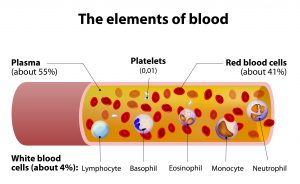 Platelets Not Source of Inflammatory Markers in CF Patients' Blood, Study Finds