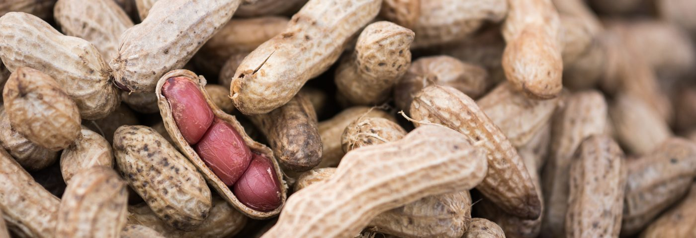 Mold Toxins in Nuts and Corn Can Aggravate CF Symptoms, Cause Infections
