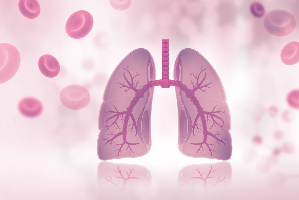 lucky and lung transplant