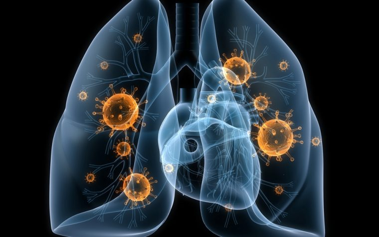 inhaled bacteria and cystic fibrosis