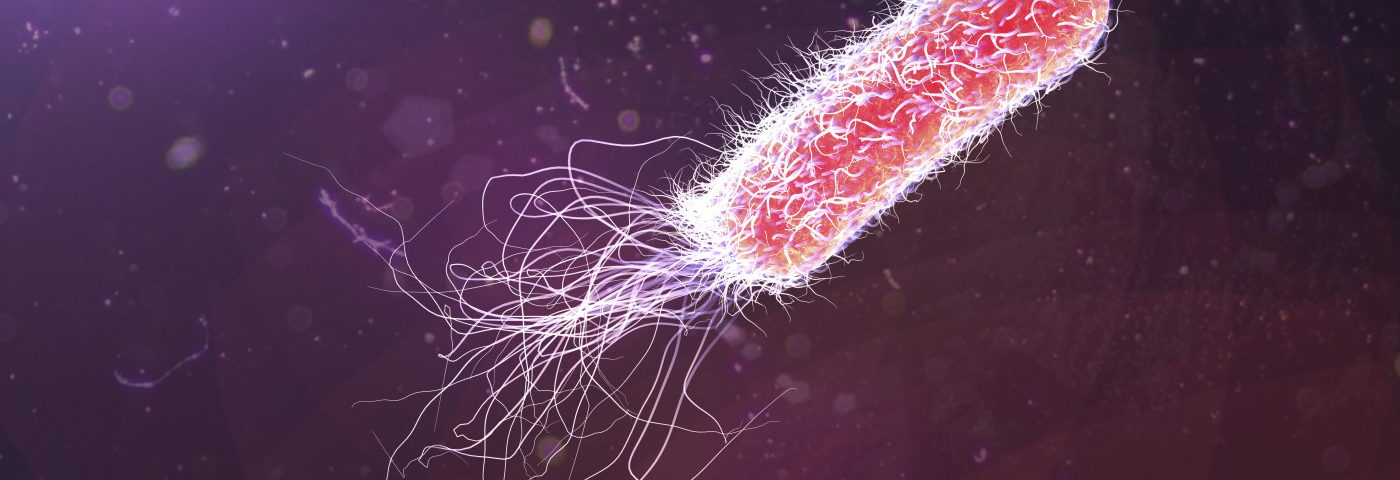 #ECFS2018 – Multiple Sclerosis Therapy Boosts Antibiotic's Ability to Kill Resistant P. aeruginosa Strains, Study Finds