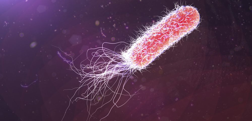 Volatile Molecules from CF Patients May Help Identify Bacterial Infections, Researchers Find