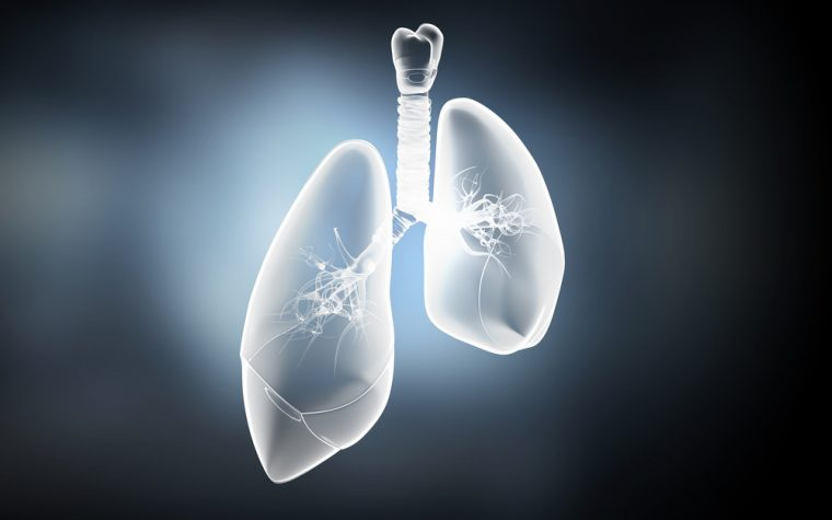 JHL to Start Phase 1 Trial of Its Cystic Fibrosis Biosimilar to Pulmozyme