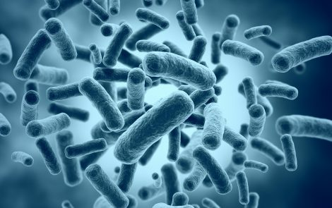 Specific Peptide May Lower Antibiotic Resistance of P. aeruginosa Bacteria, Study Reports