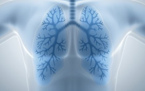 Lungs Grown in Yale Lab Have Potential for Patients with CF, Other Chronic Lung Diseases