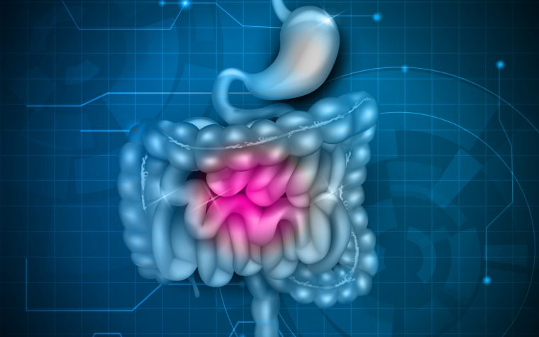 Fecal Protein Tied to Worse GI Symptoms, Quality of Life in CF Children