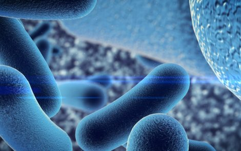 Drying Does Not Clear Nebulizers of NTM Bacteria, Study Finds