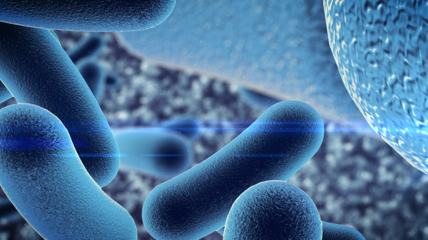 mucus and bacteria