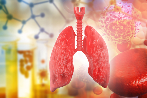 Cells Grown in Artificial Organs May Be Most Viable for Lung Disease Research