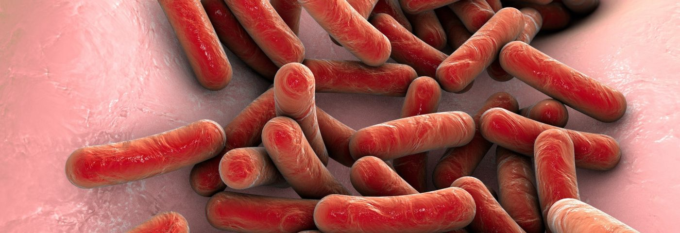Research Sets Out to Identify Mechanisms of Dormant, Antibiotic-resistant Bacteria