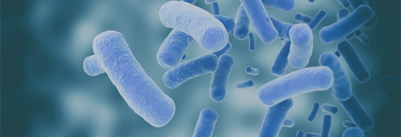 Vav3 Protein Creates 'Docking Station' for Bacteria, Leading to Lung Infections, Scientists Discover