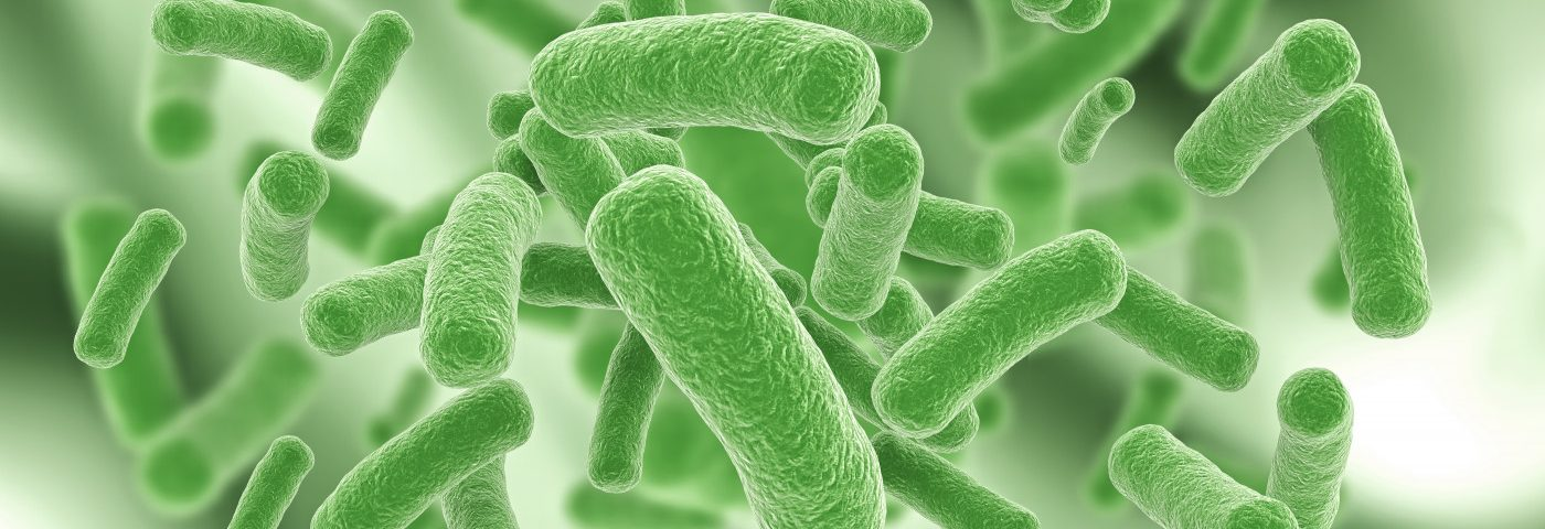 Defects in Mitochondria May Sustain Burkholderia Cenocepacia Infections in CF