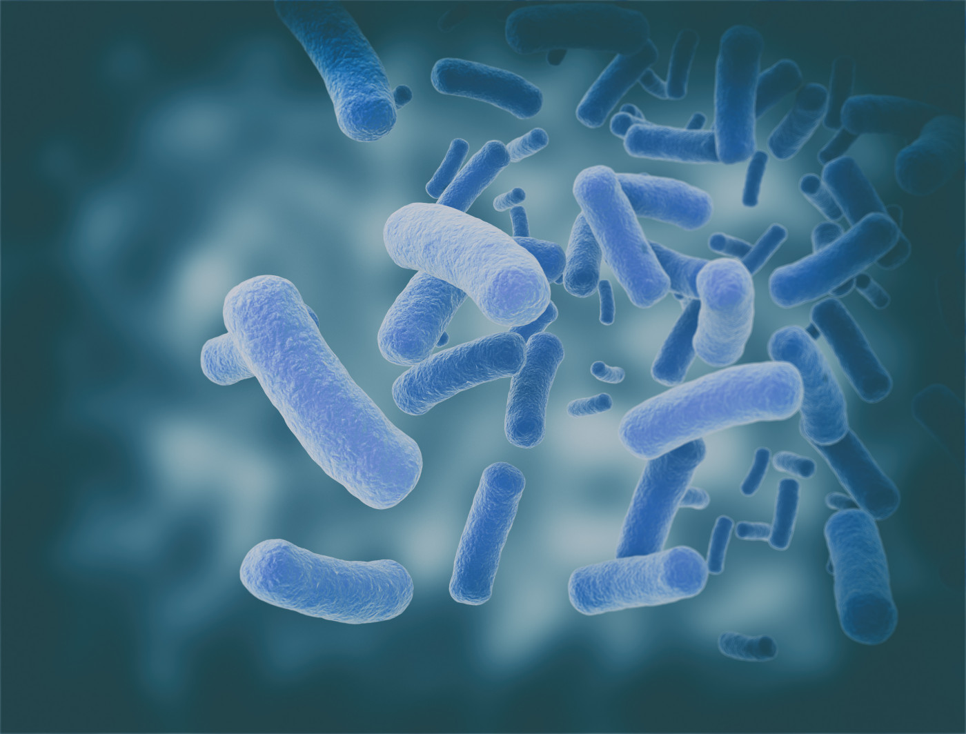 bacteria and CF