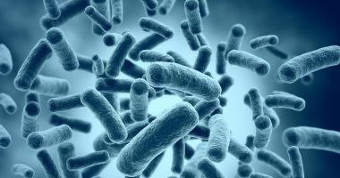 MRSA in CF lung infections | Cystic Fibrosis News Today | bacteria